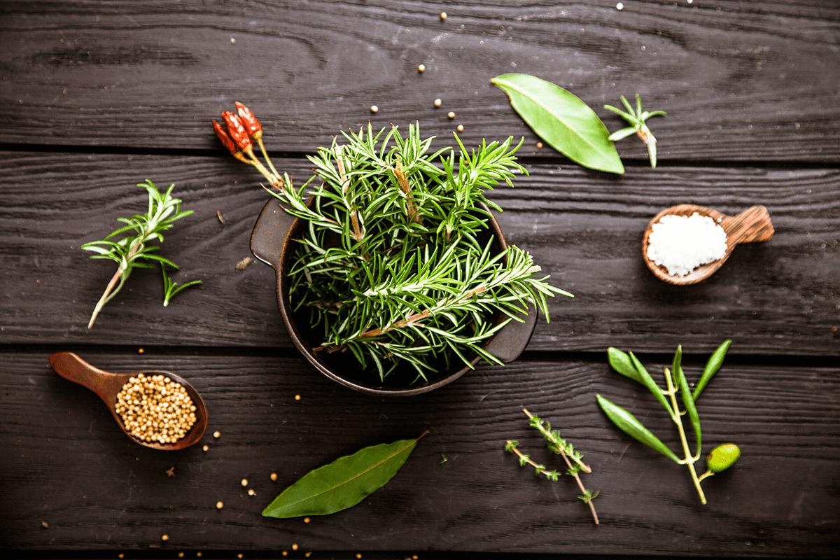 świeże zioła jak dobrze przechowywać żywność w gastronomii? Jak dobrze przechowywać żywność w gastronomii? swieze ziola